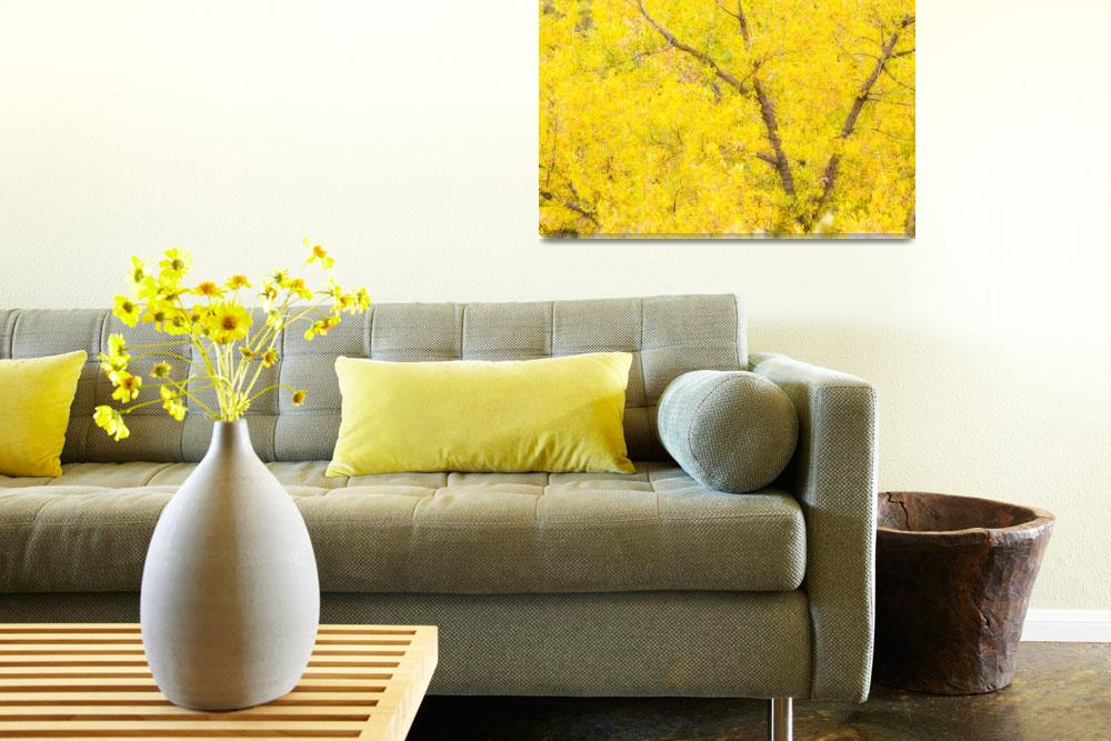 """""""Cottonwood Autumn Color Abstract&quot  (2010) by lightningman"""