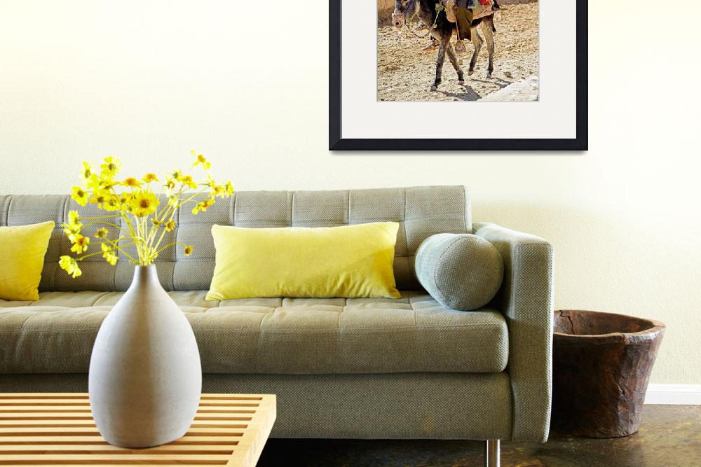 """""""Donkey and riders&quot  by Dalyn"""