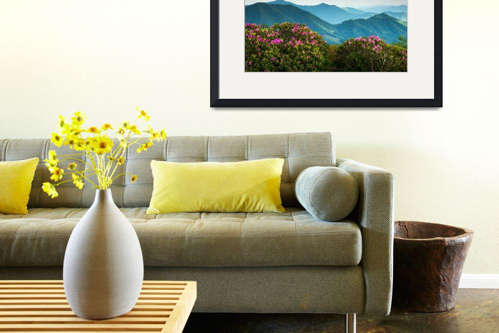 """Blue Ridge Appalachian Mountains Spring Flowers""  (2012) by DAPhoto"