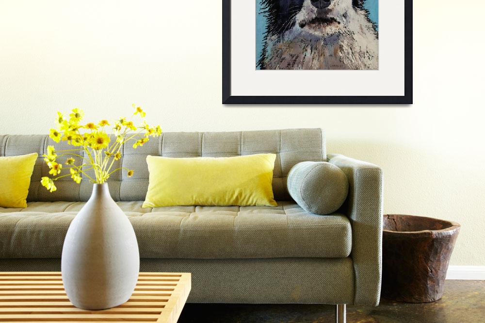"""""""Border Collie Portrait""""  by creese"""