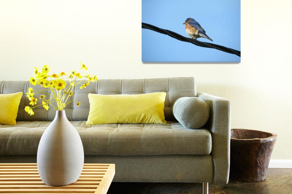 """""""Bird on a wire&quot  by ESNielsen"""