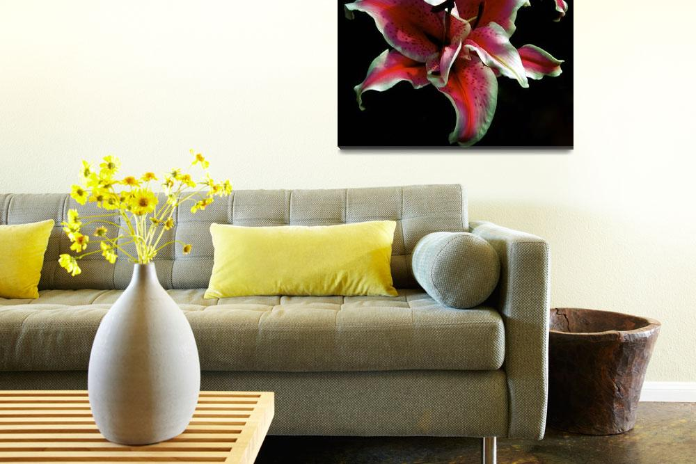 """""""Mona Lisa Lily&quot  (2010) by meaganjdesign"""