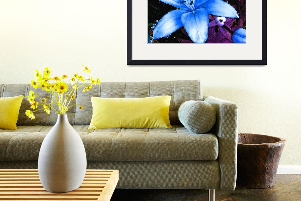 """""""Blue Asiatic Lily&quot  (2012) by ShawnaRowe"""