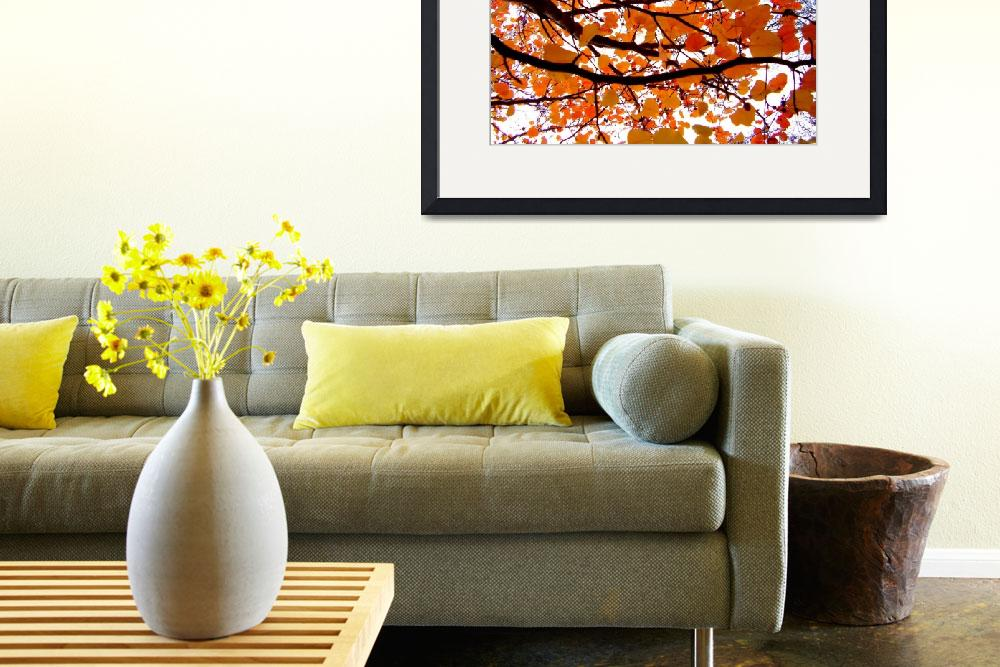 """""""Autumn Glory""""  (2007) by HowardMMagery"""