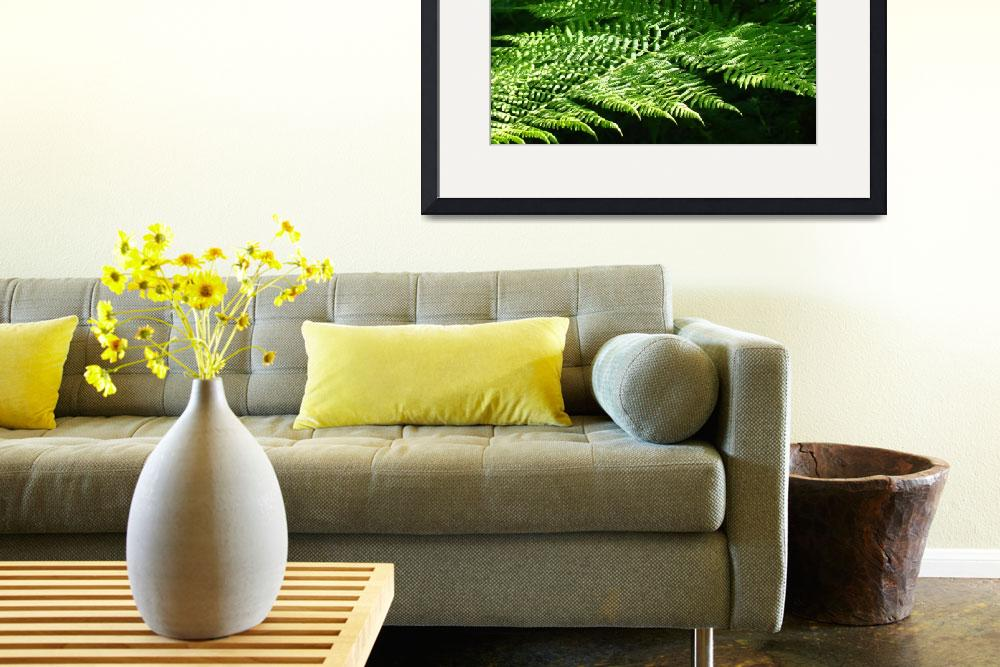 """""""Green Forest Fern Branches Leaves Art Prints Ferns&quot  (2014) by BasleeTroutman"""
