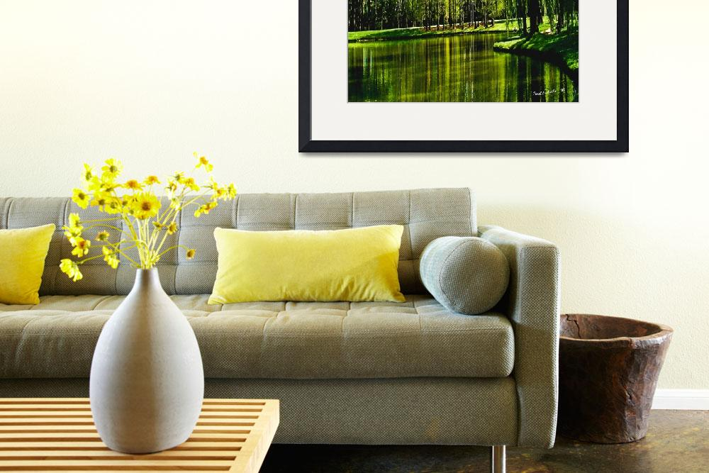 """""""Weeping Willow Tree Ribbons Meditation Wall Art&quot  (2010) by PhotographsByCarolFAustin"""