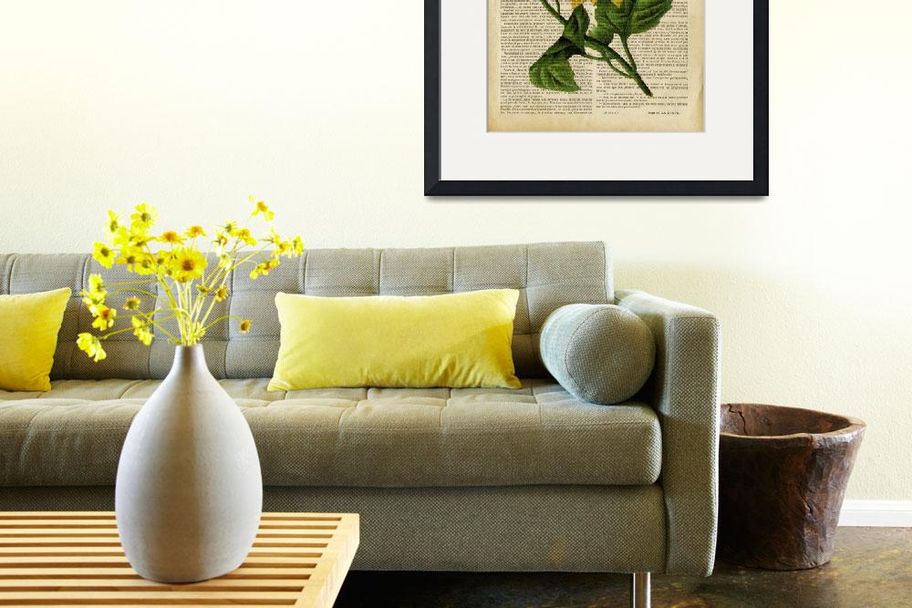 """old book page botanical print - sunflower""  by Art_by_Lilia"