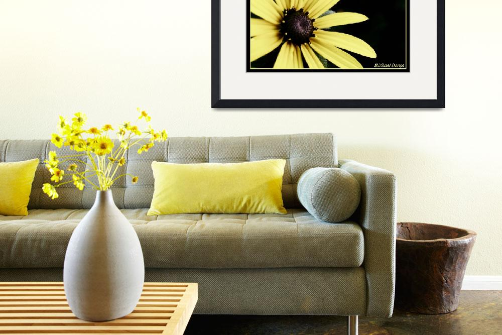 """""""Yellow Daisy&quot  by MikeDargaPhotography"""