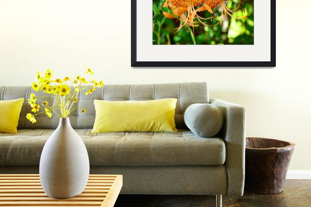 """""""Tiger Lily Fine art photography Baslee Troutman&quot  (2010) by BasleeTroutman"""