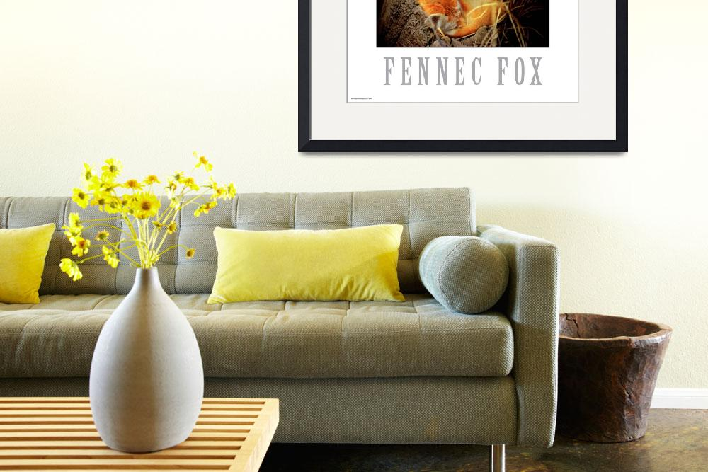 """Fennec fox poster&quot  (2006) by Dangerouslyclose"