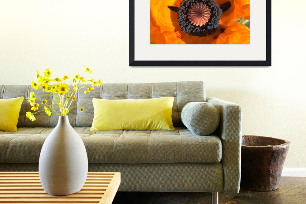 """""""Smiley Face Poppy Flower&quot  by 84rms"""