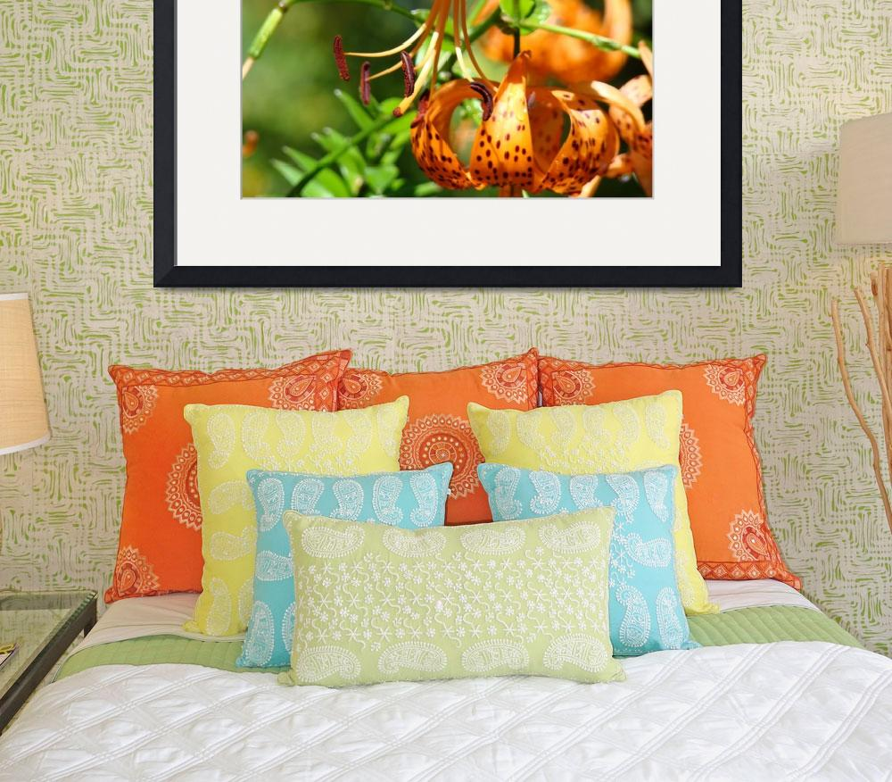 """TIGER LILIES Art Orange Tiger Lily Flowers Baslee&quot  (2009) by BasleeTroutman"
