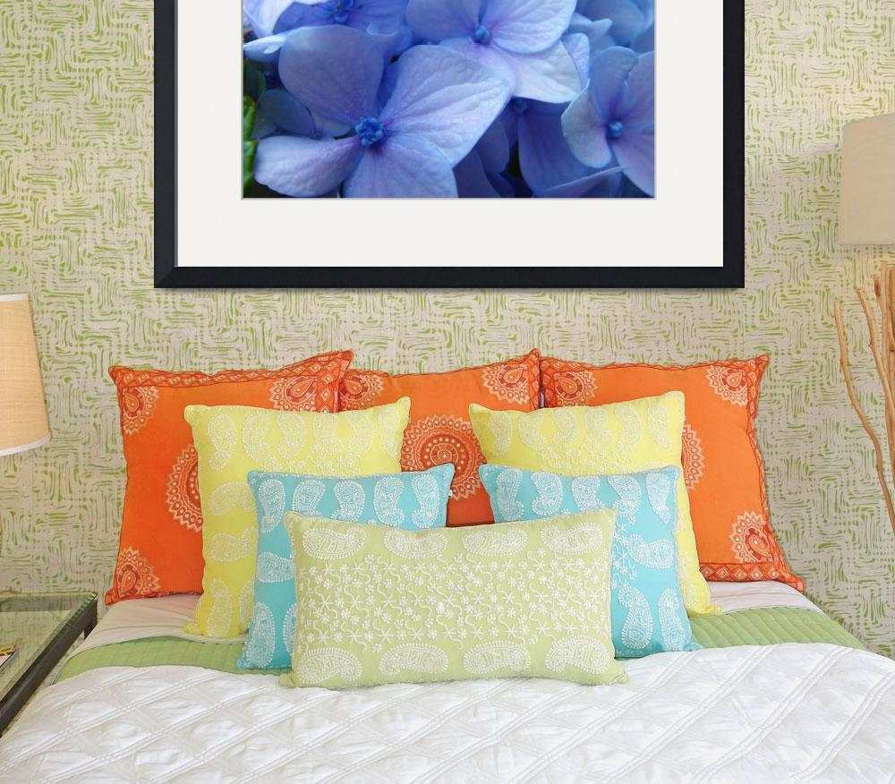 """Blue Hydrangea Flower art prints Nature Colorful&quot  (2010) by BasleeTroutman"