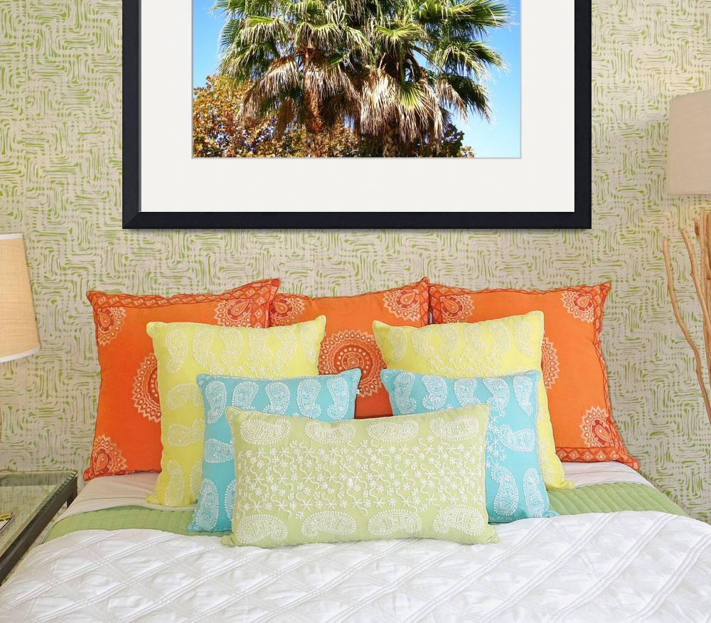"""Silicon Valley Palm Tree Tops&quot  by Artsart"