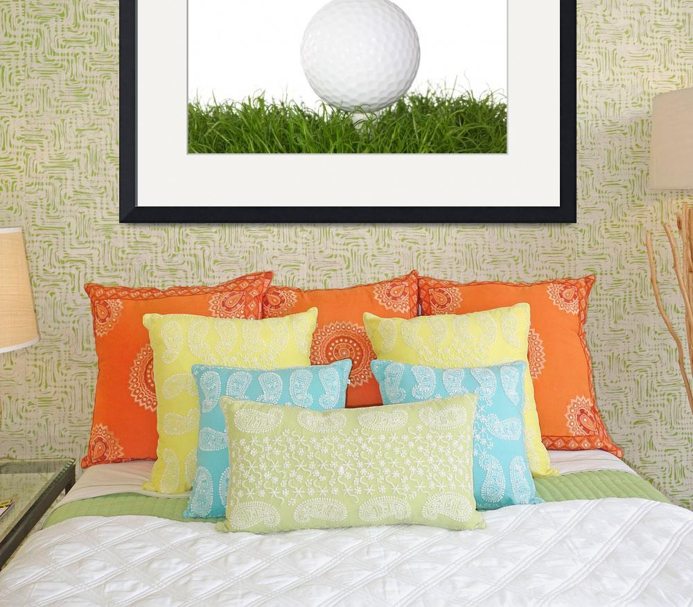 """A golf ball in the grass.""  (2008) by Piotr_Marcinski"