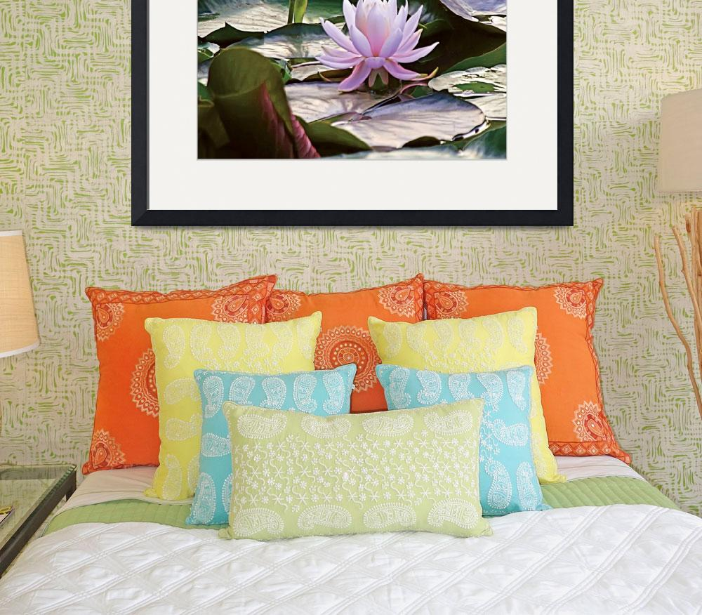 """""""Lilly Pad Flower&quot  (2010) by reynolds"""