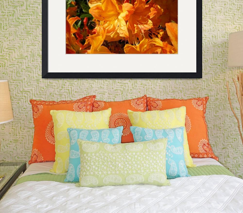 """""""Rhodies Orange Art Rhododendrons Flowers Prints&quot  (2014) by BasleeTroutman"""