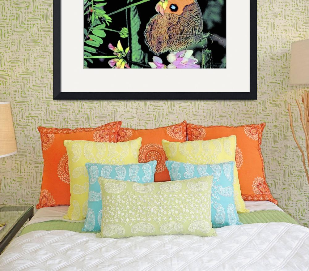 """Butterfly Love Collection (7 of 7)&quot  (2012) by WallArtDeco"