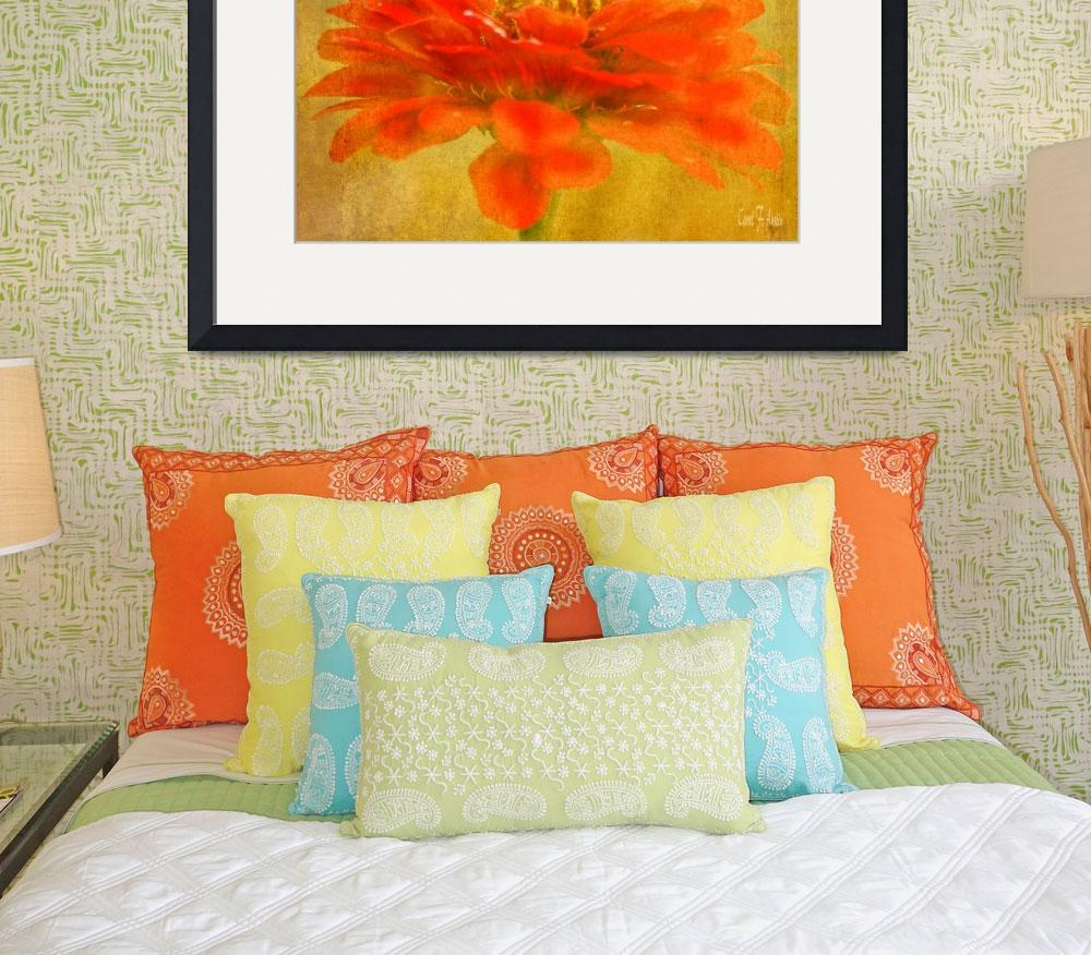 """""""Zinnia Red Orange Color Floral Wall Art&quot  (2013) by PhotographsByCarolFAustin"""
