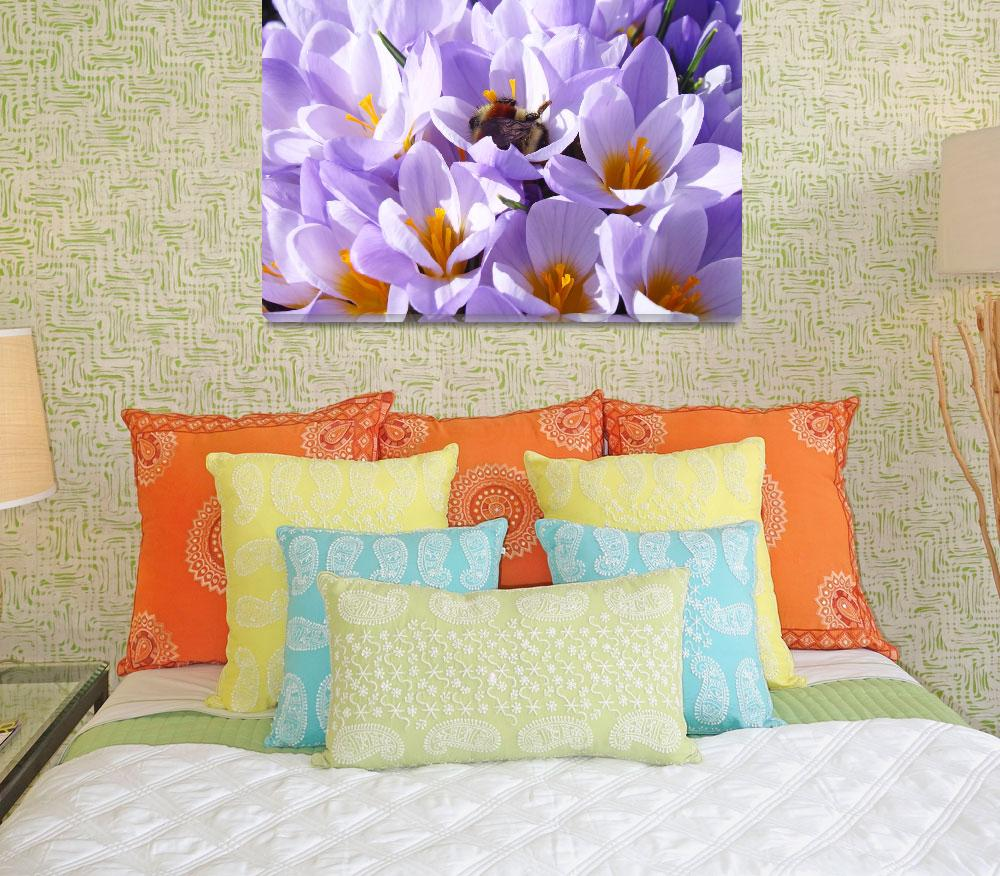 """Crocus Flower Honey bee art prints Spring""  (2014) by BasleeTroutman"
