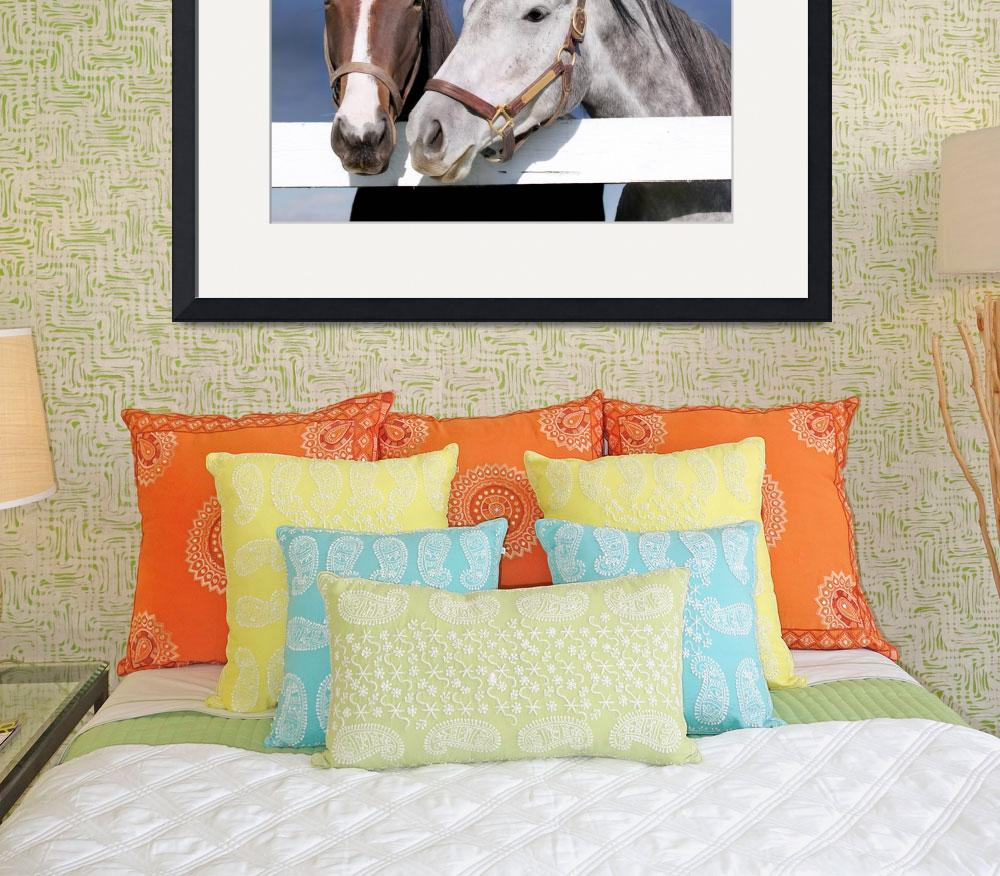 """""""Horses""""  (2009) by lillisphotography"""