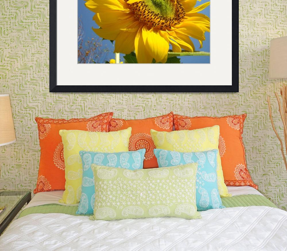 """Christmas Gift Gallery SUNFLOWERS Art""  (2009) by BasleeTroutman"