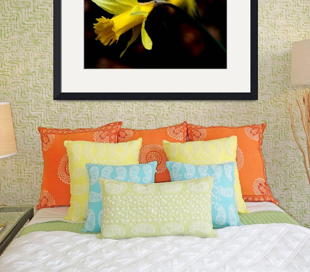 """""""Daffodil&quot  (2010) by tennessewood"""