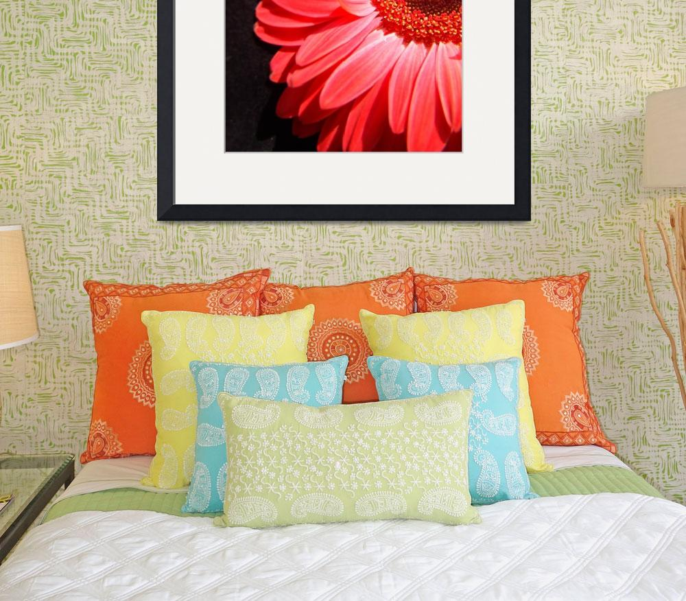 """""""Red Gerbera Daisy Luxurious&quot  (2006) by Infomages"""