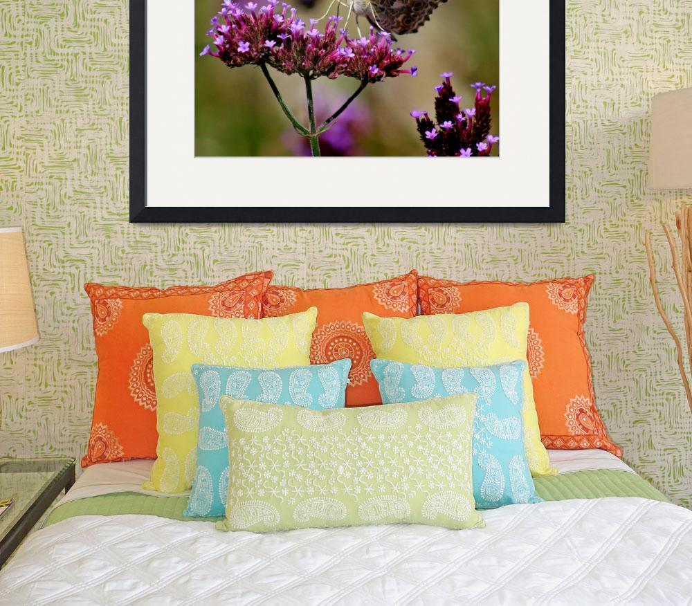 """""""American Painted Lady Butterfly on Verbena&quot  (2013) by KsWorldArt"""