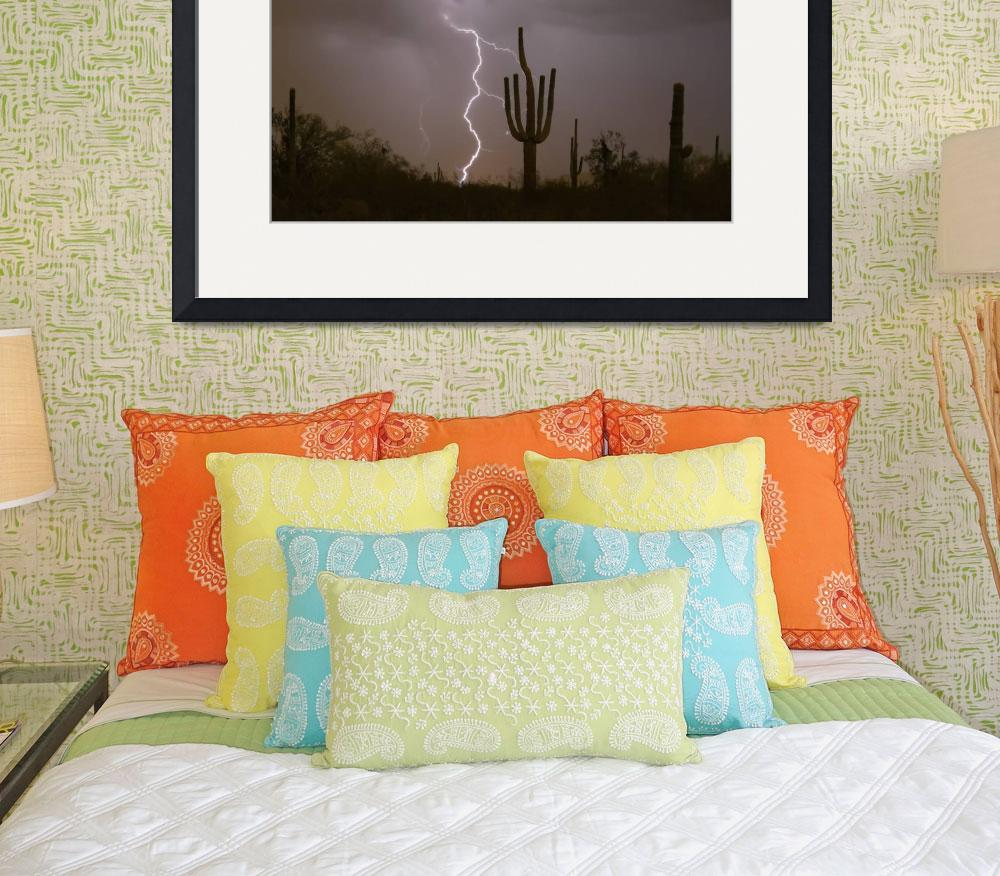 """Giant Saguaro Desert Lightning Strike&quot  (2015) by lightningman"