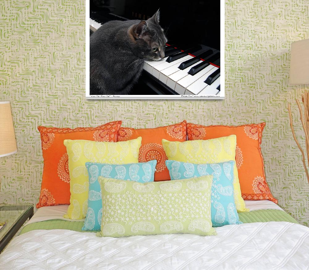 """""""Nora The Piano Cat™ - n0030&quot  (2008) by ravenswingstudio"""