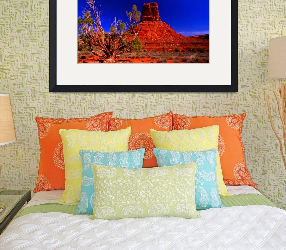 """""""Valley of the Gods&quot  (2007) by jwoodphoto"""