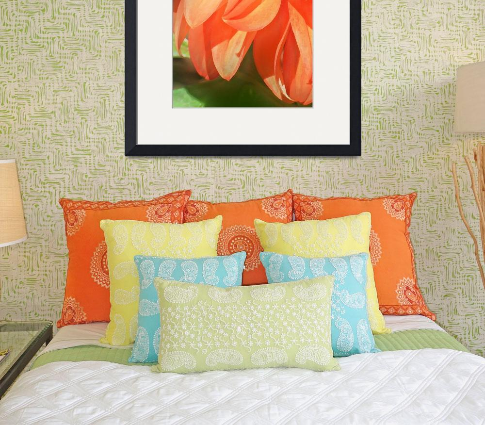 """""""Prince Of Orange""""  (2010) by Tapestry"""