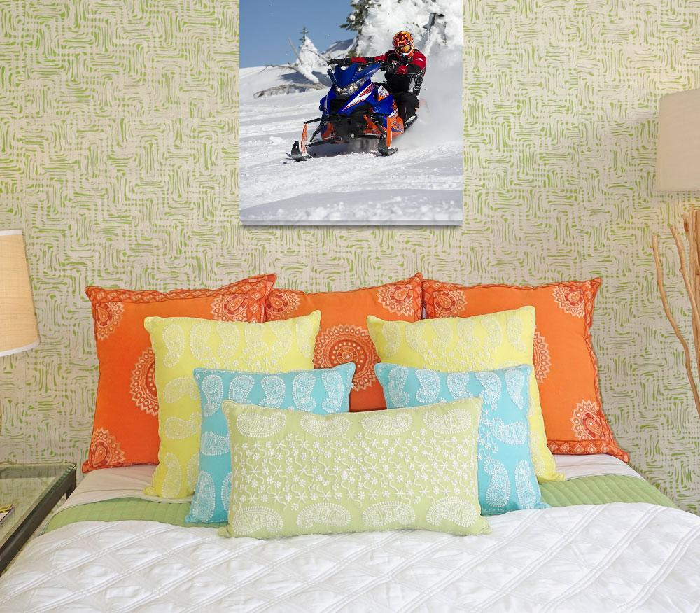 """""""Limited Edition Snowmobile""""  by KalmbachPublishing"""