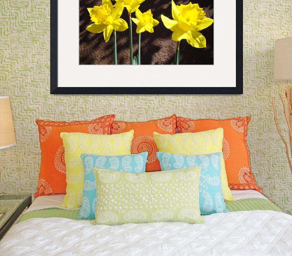 """Spring Daffodils Flowers Garden art prints""  (2014) by BasleeTroutman"