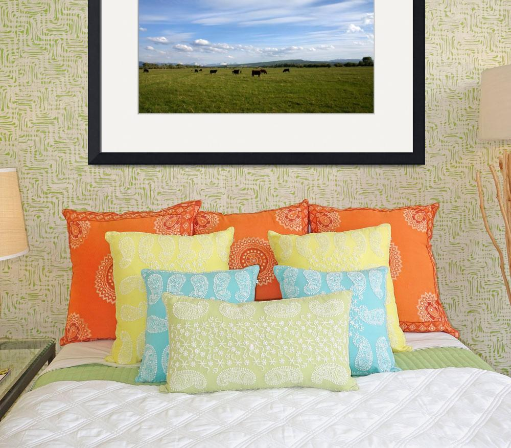 """Rocky Mountain Pasture&quot  (2006) by Landscapes"