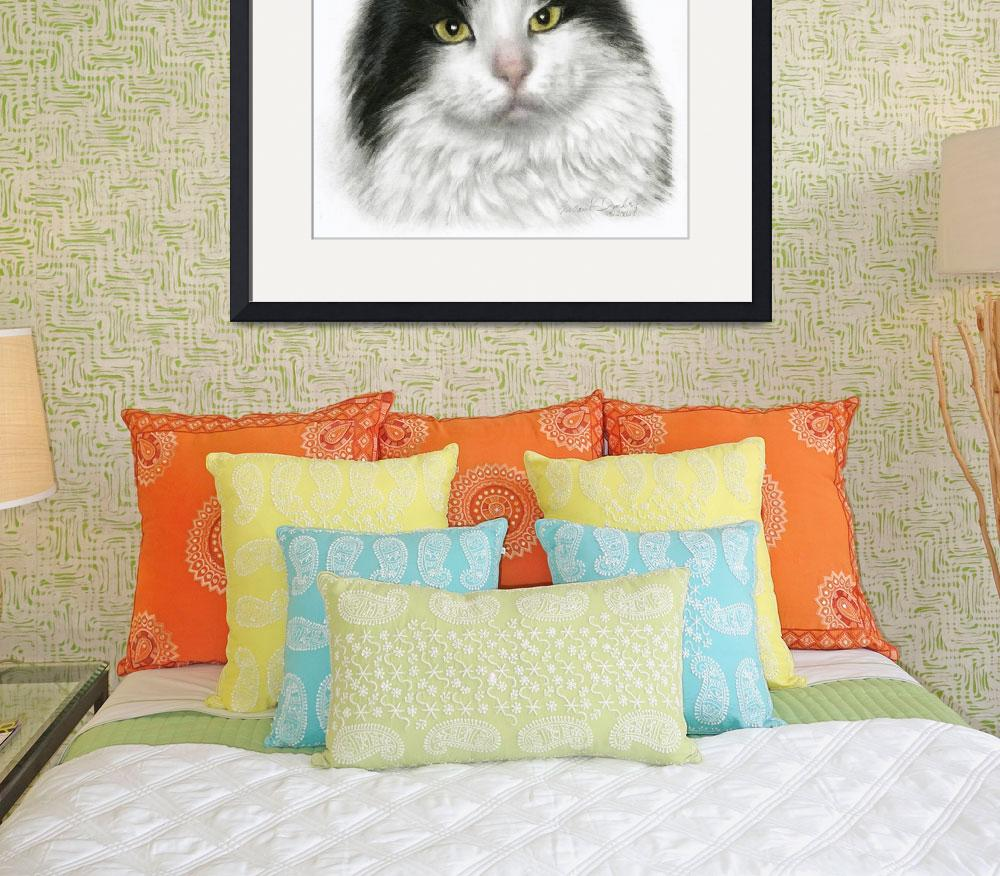"""""""Marie, Black & White Long-Haired Cat&quot  (2006) by sdonley"""