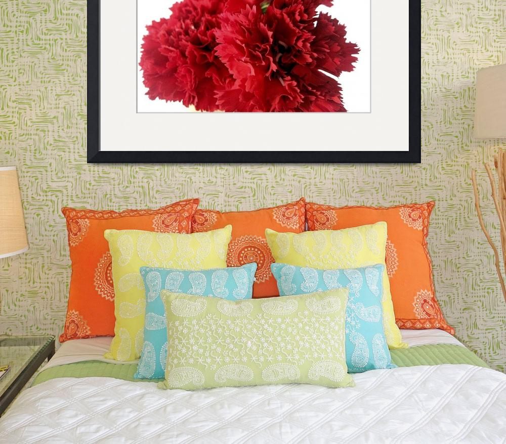 """Red Carnations&quot  (2009) by Alvimann"
