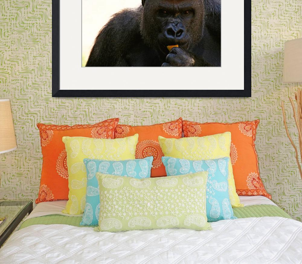 """Gorilla""  (2007) by tangerinecafe"