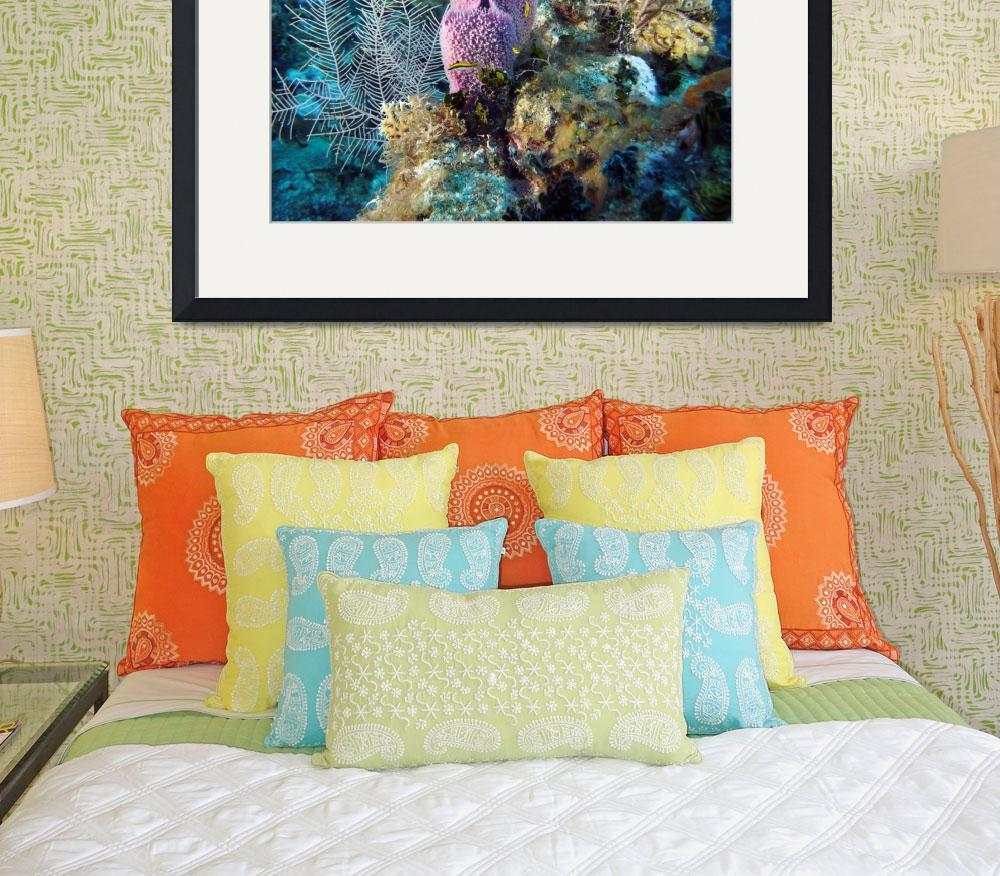 """""""Coral Reef&quot  (2013) by Bluemarlin"""