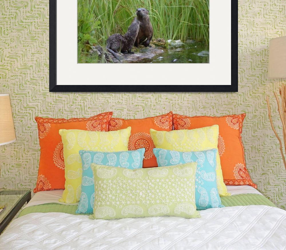 """""""River Otter Mom and baby grooming on land&quot  (2016) by truepixbymollygreene"""