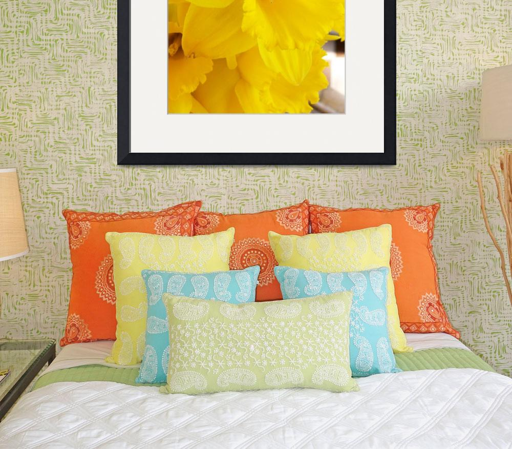 """""""Fanfare of Daffodils&quot  (2007) by justbyjulie"""
