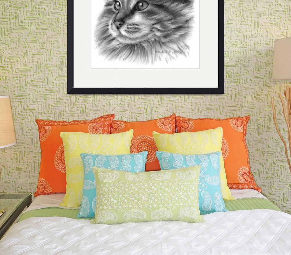 """""""Maine Coon Cat&quot  (2006) by sdonley"""