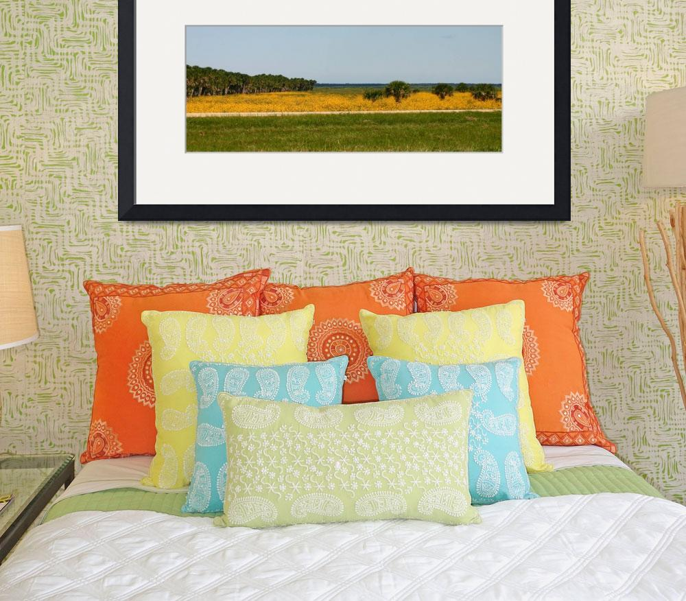 """""""Yellow Field-Panoramic&quot  (2008) by LMixedup"""