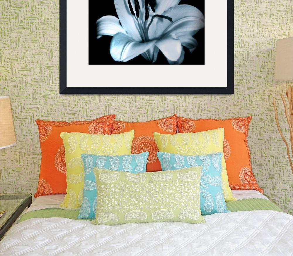 """""""Lilies&quot  (2010) by CurrieRimaging"""