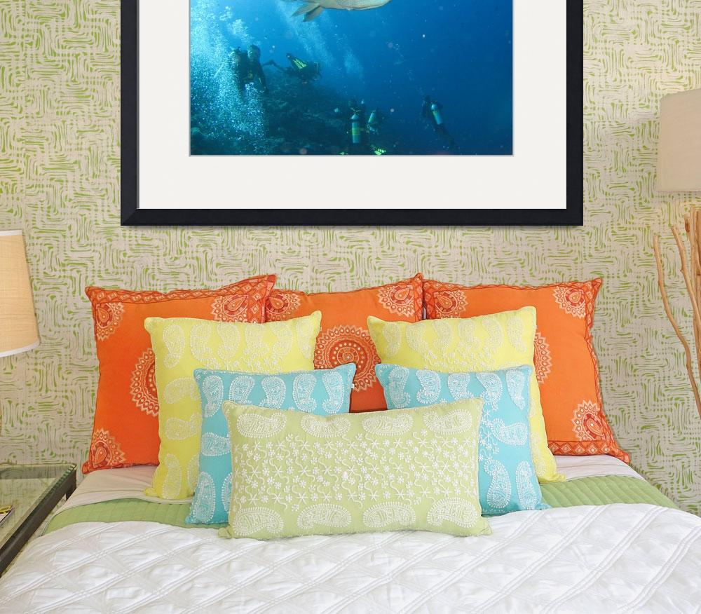 """Humphead Wrasse&quot  (2008) by KazooDiver"