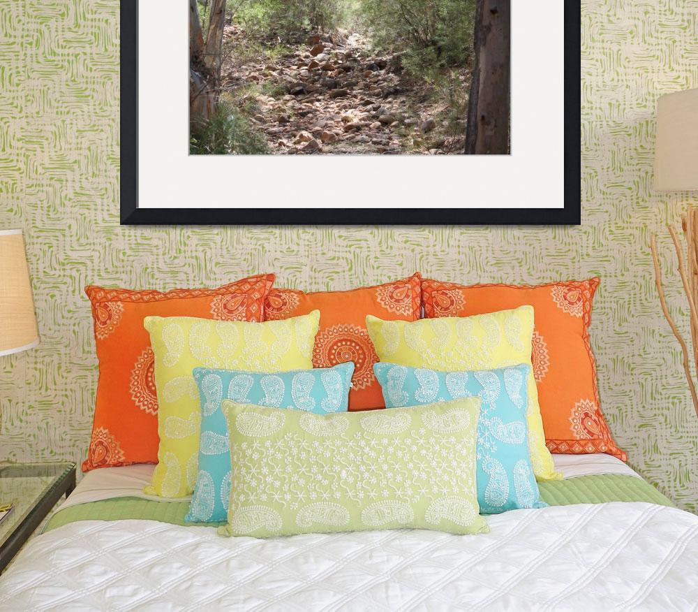 """""""Telowie Gorge Creek Bed&quot  (2009) by becsphotography"""