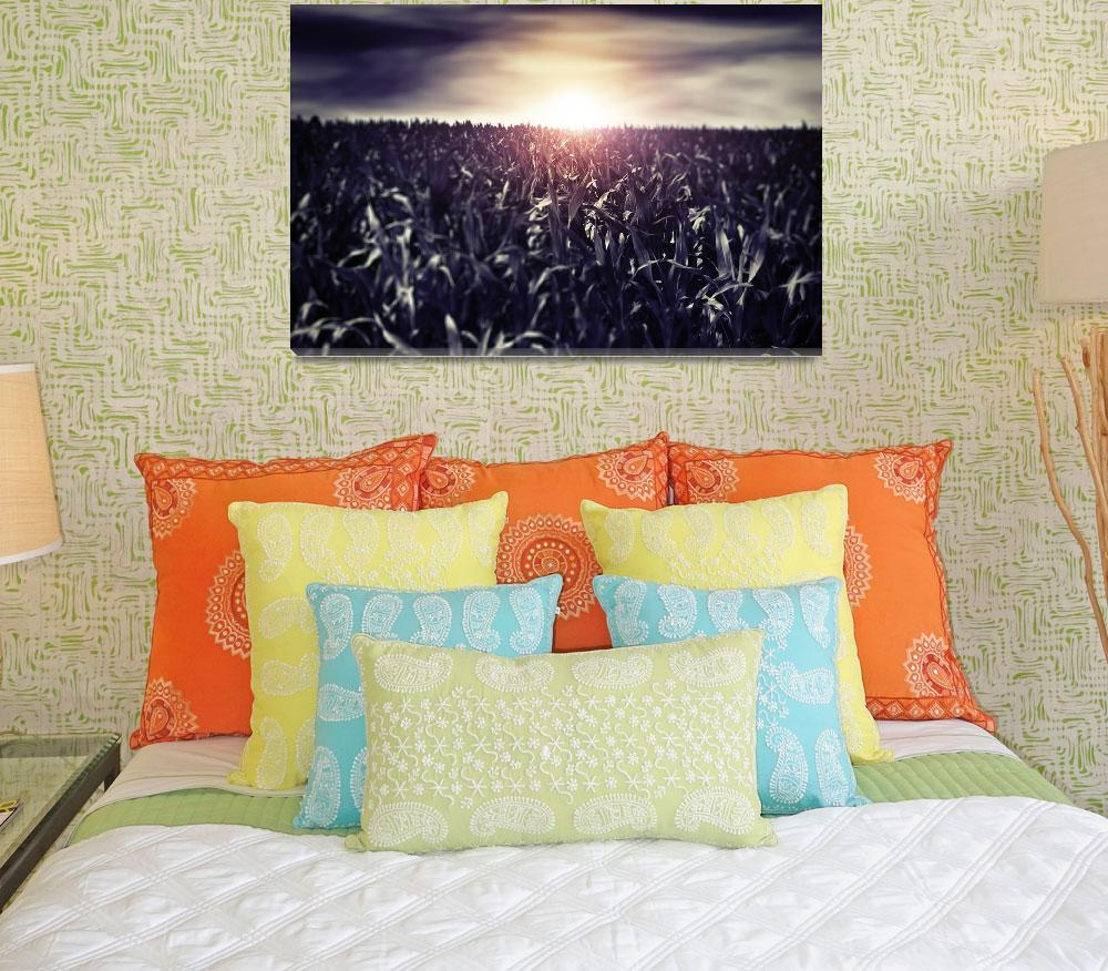 """""""Sunset Country Boulevard&quot  (2012) by dancelav"""