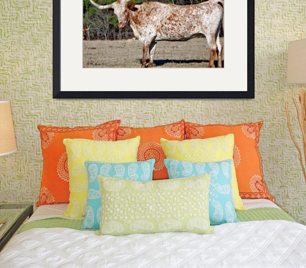 """""""Strike A Pose - Longhorn Style&quot  (2011) by bettynorthcutt"""