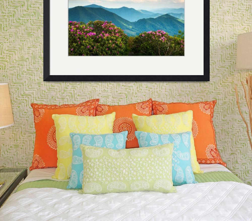 """Blue Ridge Appalachian Mountains Spring Flowers&quot  (2012) by DAPhoto"
